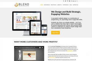 blendlocalsearchmarkeing wordpress website development-