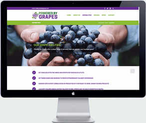 powered by grapes Singapore - website development