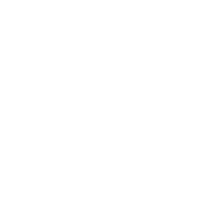 revise designs icon